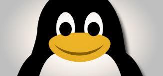 linux project management