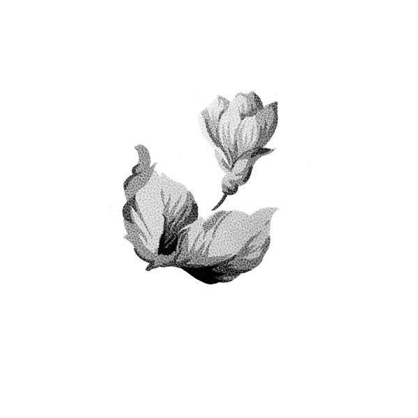 Top 10 Best Flower PSD Design For Blogger4