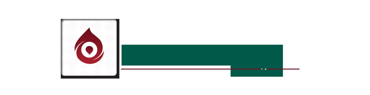 top best Free business logo design techfameplus #02-2