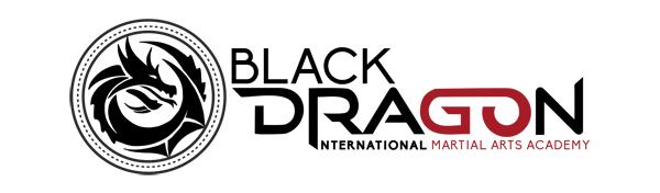 Black Dragon Martial Art Logo2