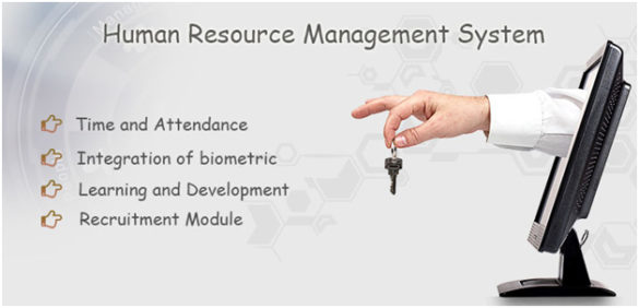 Importance of HR Software In India To Boost Overall Productivity-1