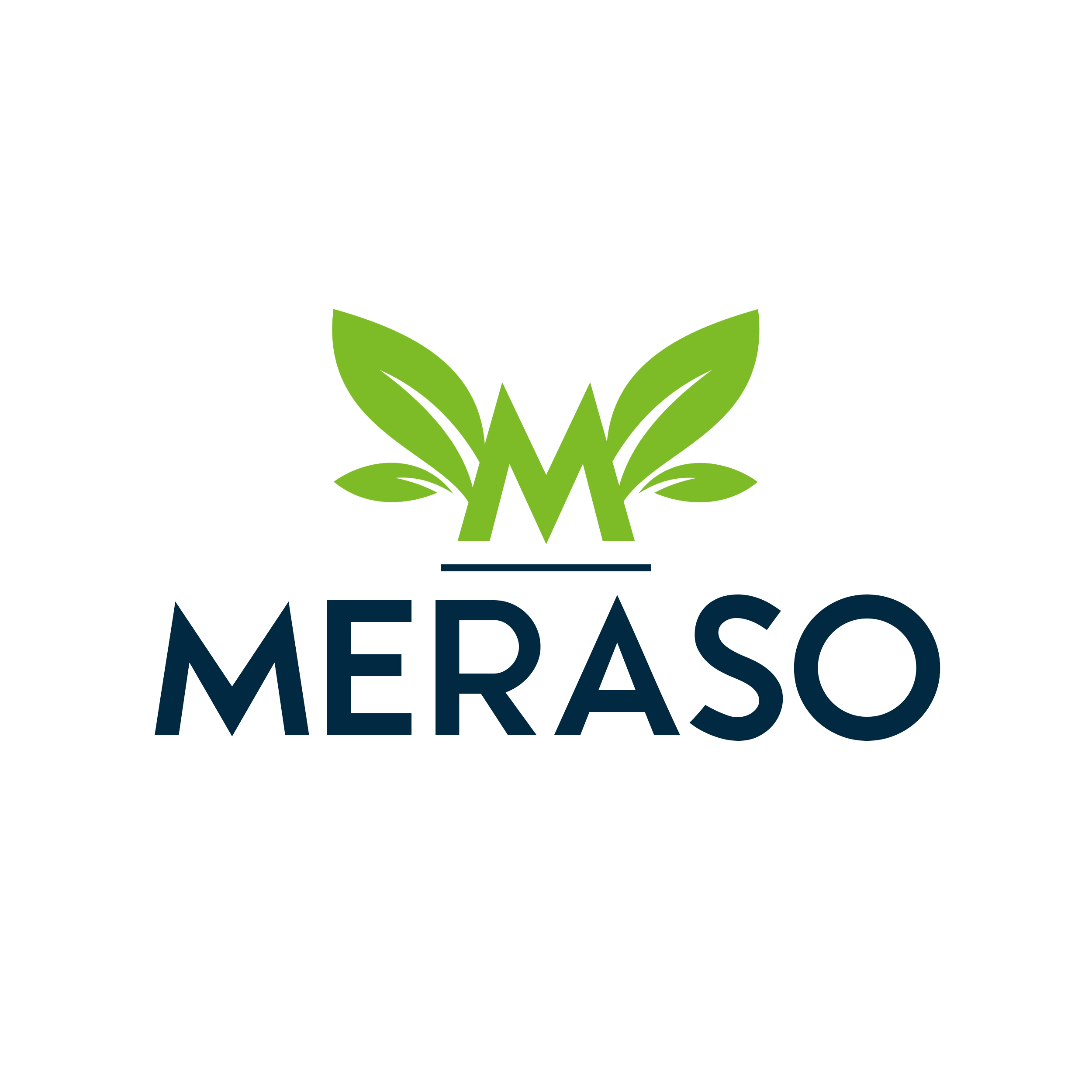 Leaf Meraso Logo Design