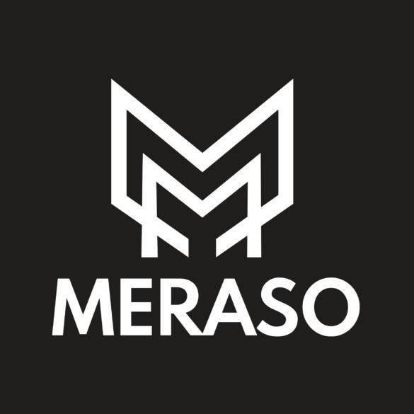 Meraso PSD Logo Design